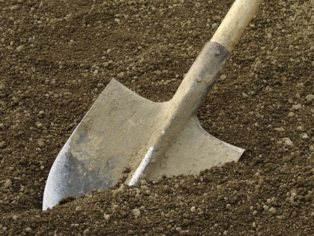 tillage: spade ready to prepare vegetable bed for sowing