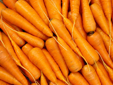 carrots: some fresh cropped carrots as background