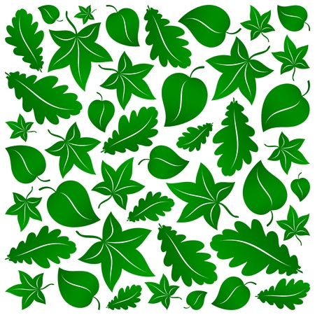 linden tree: stylized green leaves eco background Illustration