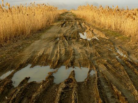 traces pneus: chemin rural sale avec des traces de pneus profondes