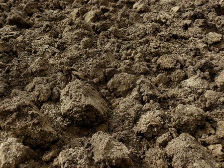 clod: freshly ploughed field fragment