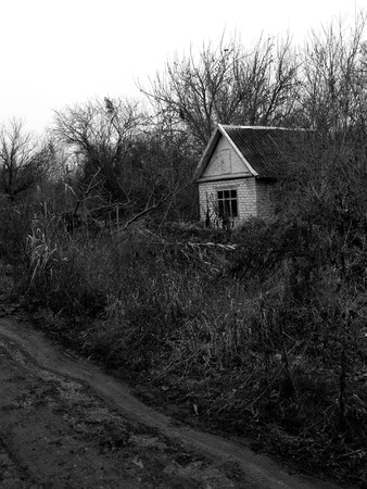 downgrade: small abandoned house surrounded by leafless trees Stock Photo