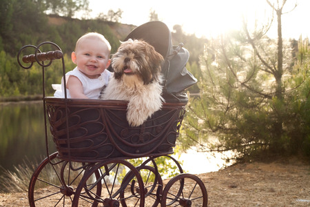 baby stroller: Baby girl and puppy are sitting in a vintage pram