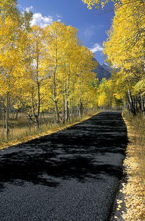 Mountain Road Stock Photo - 778078