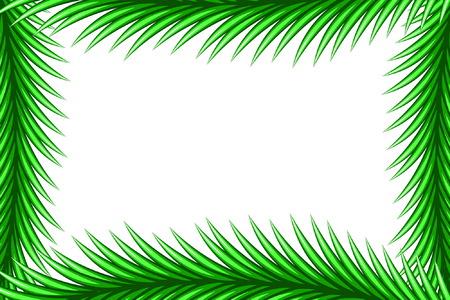 Spruce Frame Vector