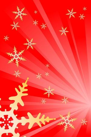 Snowflake Decoration Vector