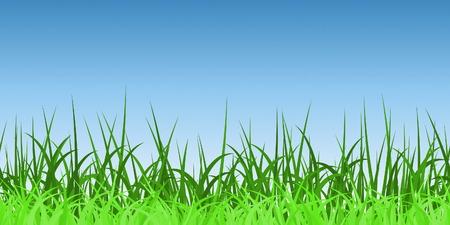 coil spring: Horizontally Seamless Green Grass Banner