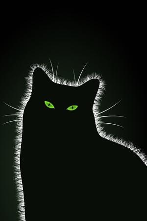 The Black Cat Stock Vector - 16235917