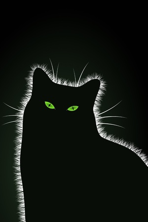 The Black Cat Stock Vector - 16235917