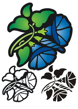 glory: Royal blue morning glory   Comes with black outline and stencil versions  Illustration