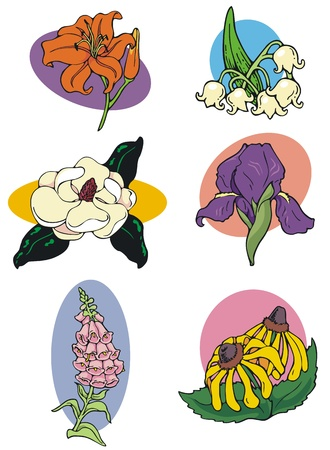 A selection of decorative bullets featuring less common flower motifs  Illustration