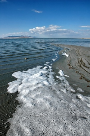briny: Salt Lake shore, with briny foam