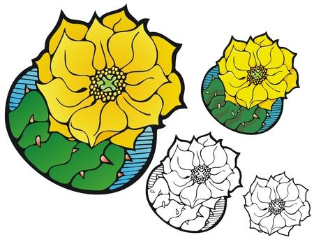 prickly pear: Prickly pear cactus blossom