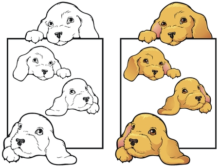 Golden Lab puppies on a border  Vector
