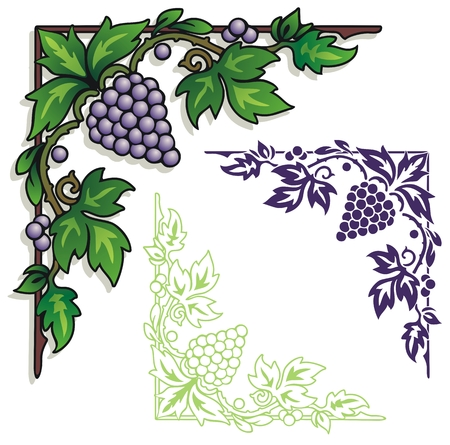 concord grape: grapes leaves and vines in a graphic corner design.