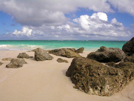 Coral rocks on Crane Beach  Barbados ...