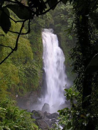 trafalgar: One of the Trafalgar Falls in the rainforest at the caribbean island Dominica... Stock Photo