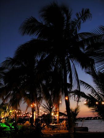 Celebration on a tropical beach at night