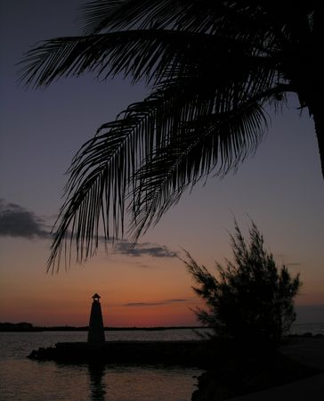 A palm and a lighthouse at sunset photo
