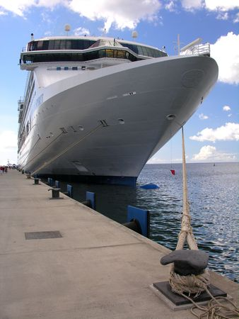 A docking cruiseship...