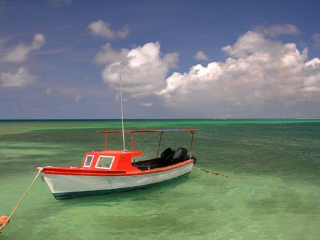 nederland: Colorful fishing boat