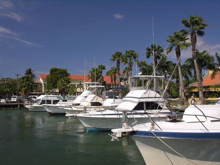 The marina of Oranjestad  Aruba