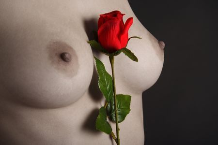 Perfect breast of a beautiful young woman with a red rose
