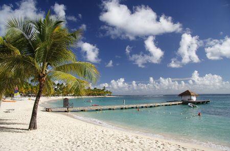 laguna: Beautiful caribbean beach