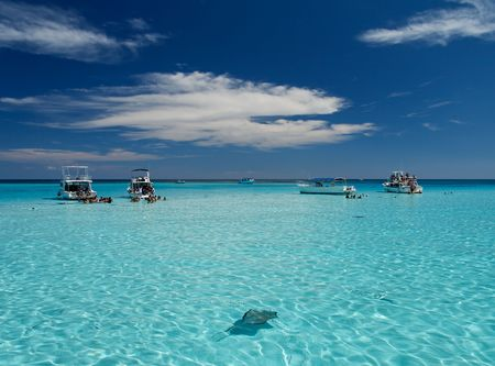 Blue caribbean water with stingrays