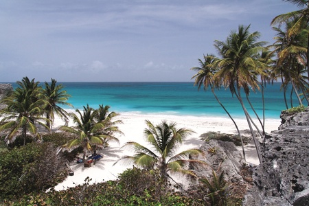 Caribbean Dream Beach  Bottom Bay  Barbados