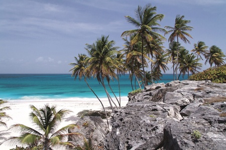 Caribbean Dream Beach  Bottom Bay  Barbados