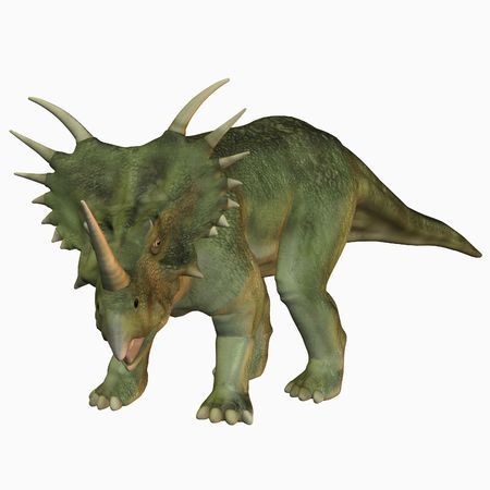 reproduction animal: Styracosaurus Stock Photo