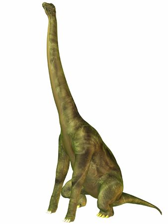 biggest animal: Brachiosaurus-Sit