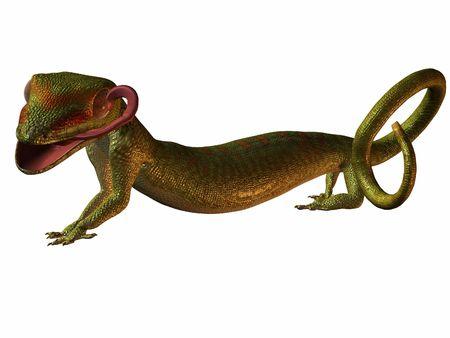 earthly: Gecko