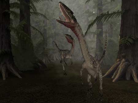 caudal: Coelophysis - 3D Dinosaur
