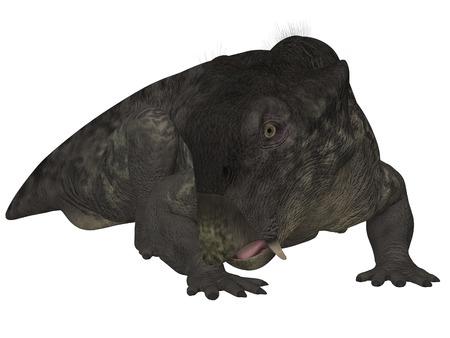 animalia: Lystrosaurus- 3D Dinosaur Stock Photo