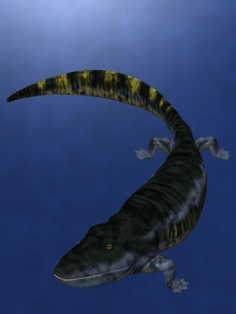 Eogyrinus attheyi - 3D Dinosaur