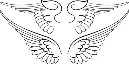 Wings barocco in stile calligrafia. Illustrazione Vettoriale.
