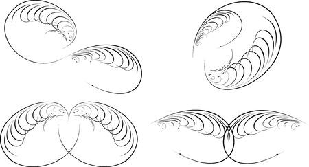 Calligraphy Baroque Curves. Vector
