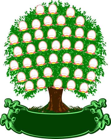 arbol genealógico: Árbol de la familia de color. Retratos son separados. Ilustración vectorial.