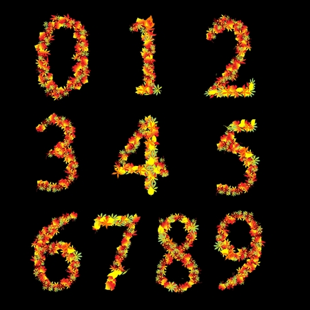 Red Yellow Vibrant Autumn Leaves Font Numbers Vector