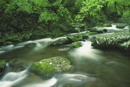 Cosby Creek in the early summer Great Mountains National Park, Tennessee Stock Photo - 636831