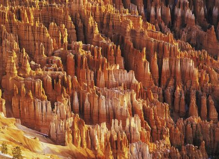 Hodoos in Bryce Canyon National Park photo
