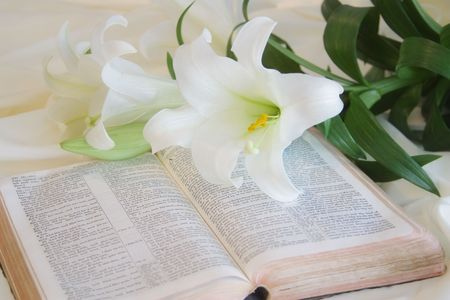 holy bibles: Easter Lily and Bible