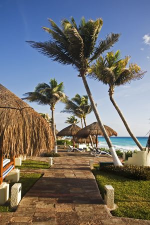 roo: Tropical resort in Cancun on the Yucatan Peninsula in Quintana Roo Mexico Stock Photo