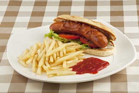 A delicious hot dog sandwich with french fries photo