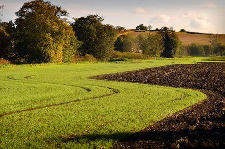 pastoral: Serene English Autumn pastoral scene