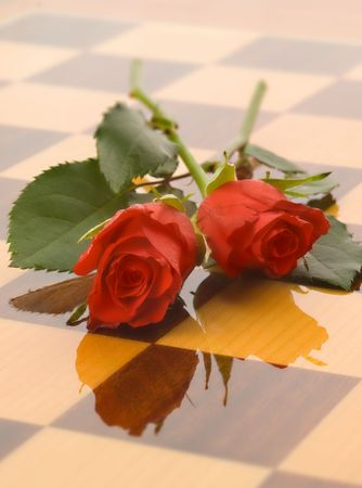 passion play: Red rose buds cast on a chess board. Shallow dof with gentle soft focus.