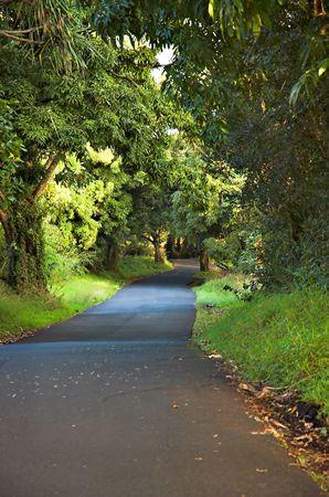Country lane on The Big Island, Hawaii.