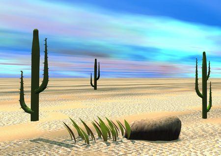 descend: Desert Stock Photo
